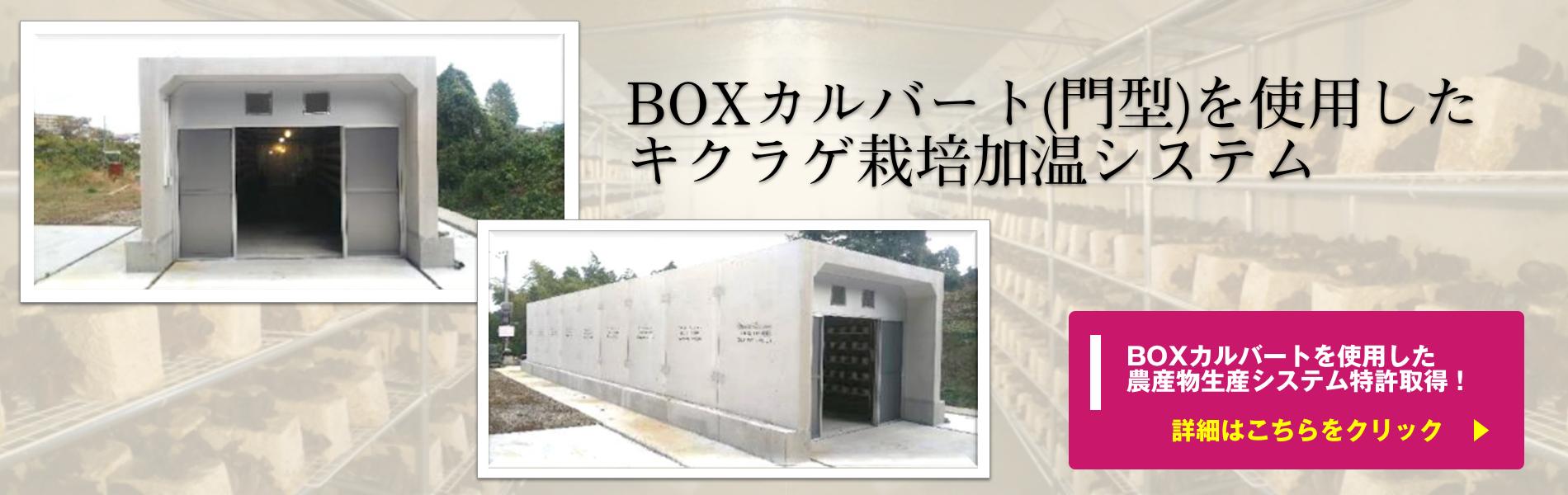 BOXカルバート(門型)を使用したキクラゲ栽培加温システム